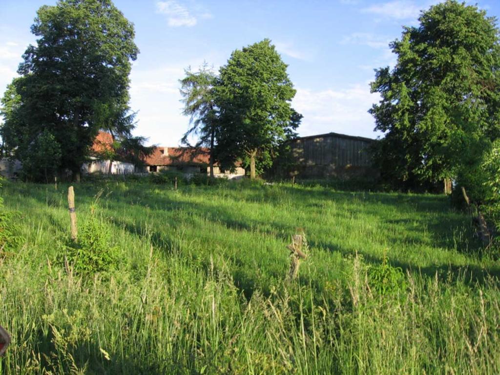 Der Hof Franz Sohn in Schatzberg (Scarbiec)