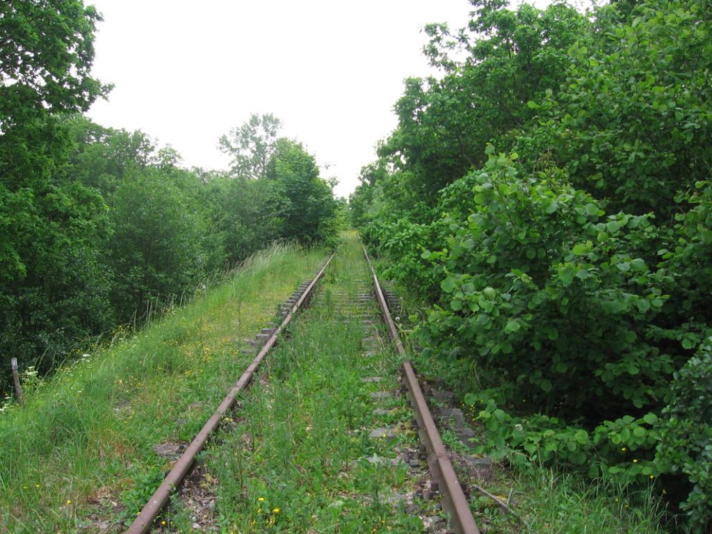 Die stillgelegte Bahntrasse 2007